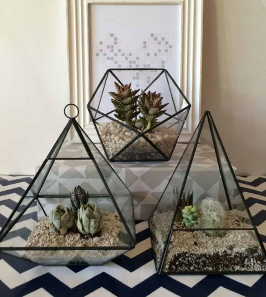 DIY wedding ideas terrarium