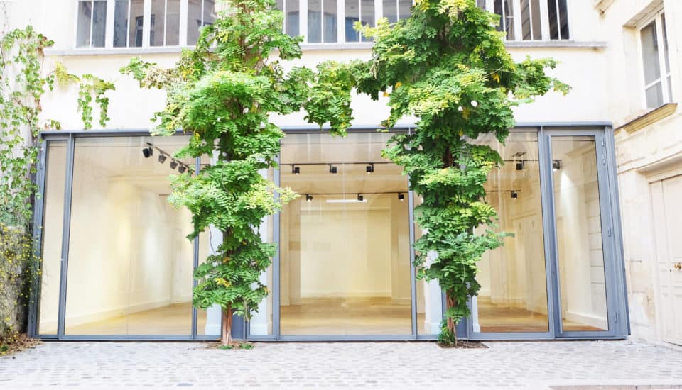 pantone color of the year greenery spaces