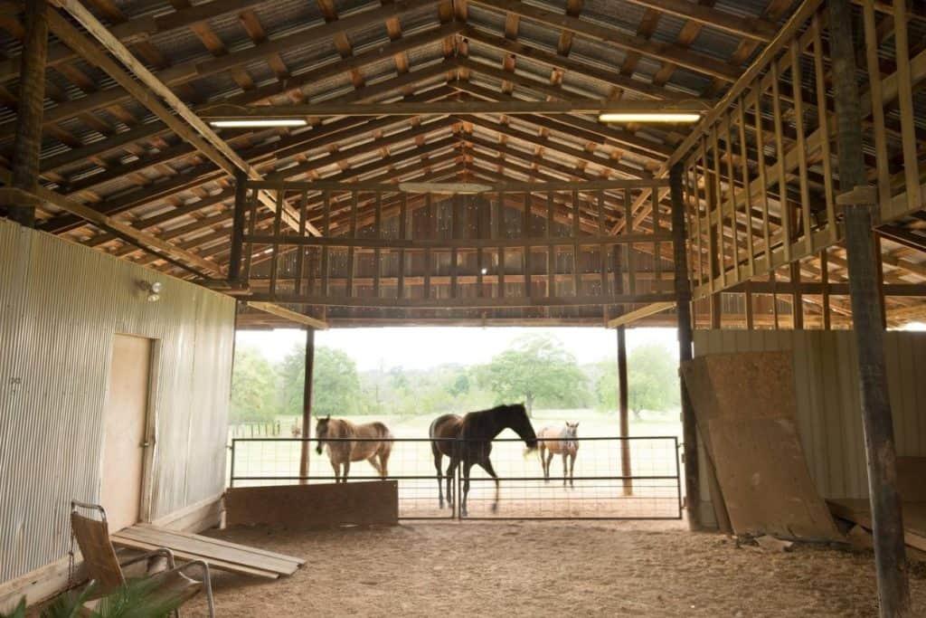 Cut and Shoot Ranch Retreat houston rental
