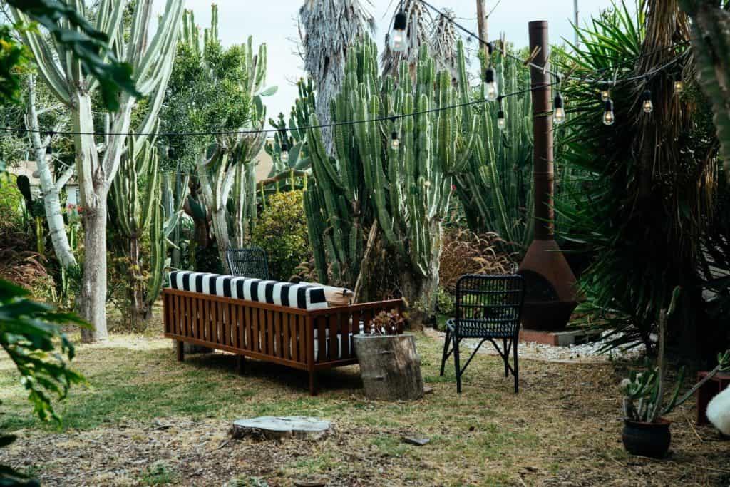 Magical Hidden Cactus Sanctuary los angeles rental