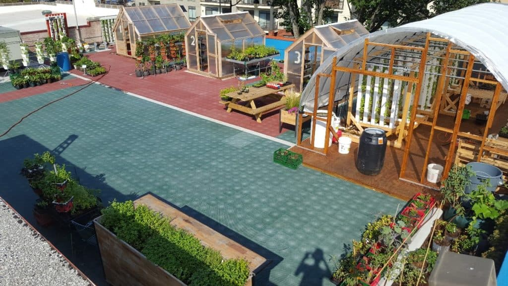 Rooftop Garden with DC View washington dc rental