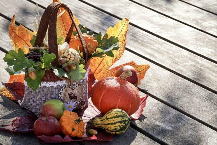 12 Special Thanksgiving Ideas During COVID | Peerspace