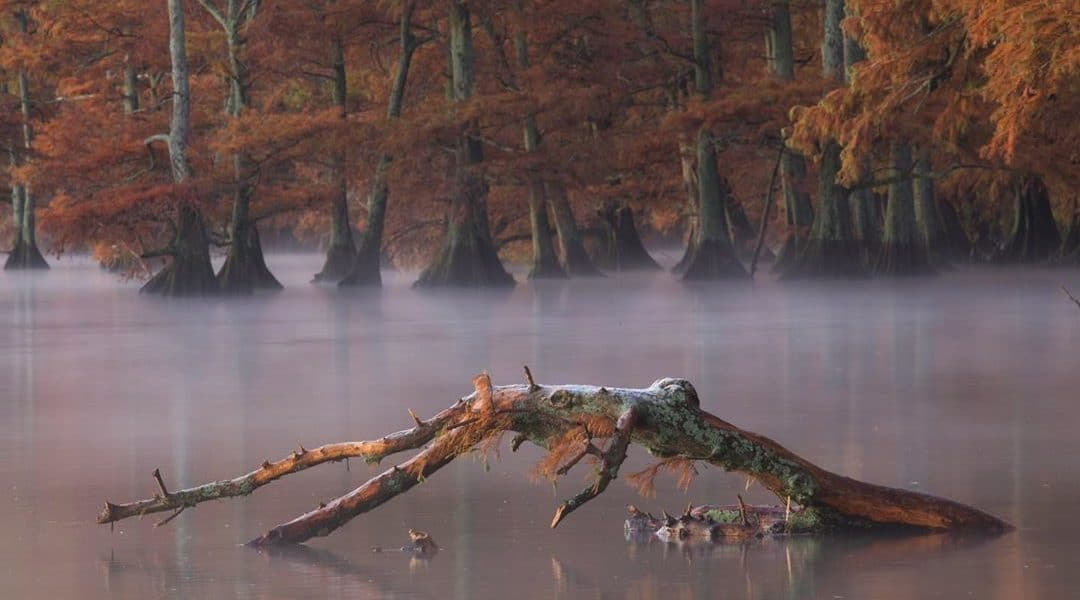 best nashville landscape photographers