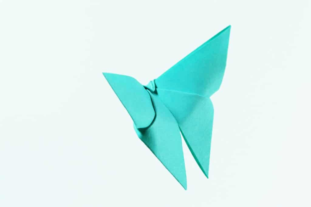 butterfly theme party origami