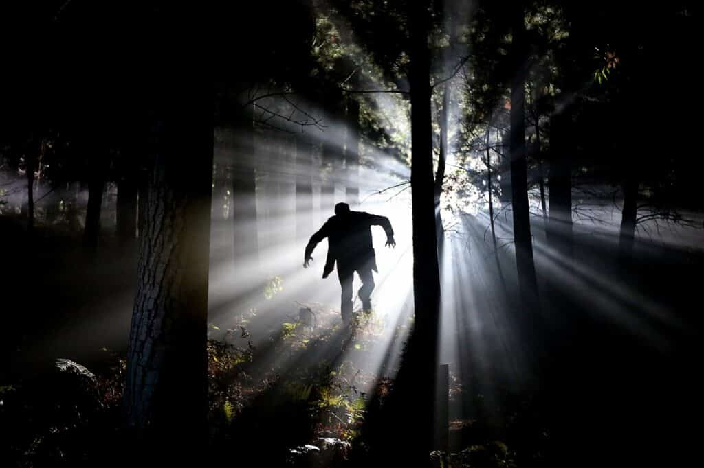 man in forest with harsh lighting