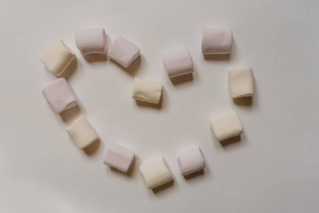 marshmallow party favor frozen
