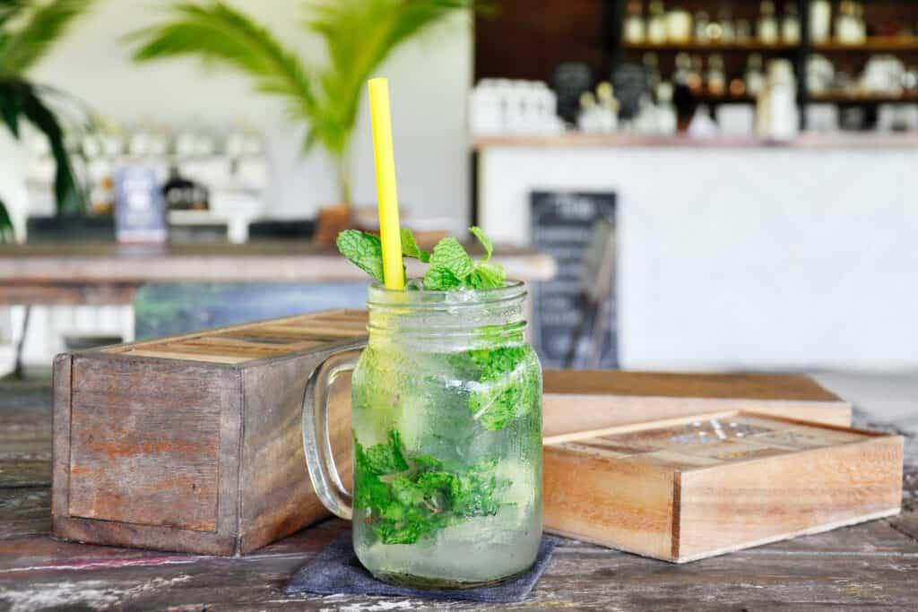 mint julep craft cocktail