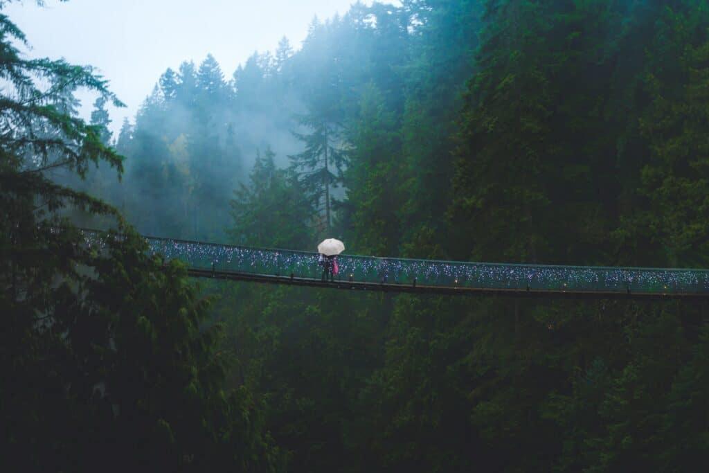 vancouver capilano Suspension Bridge