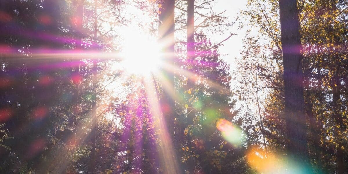what is lens flare lead image