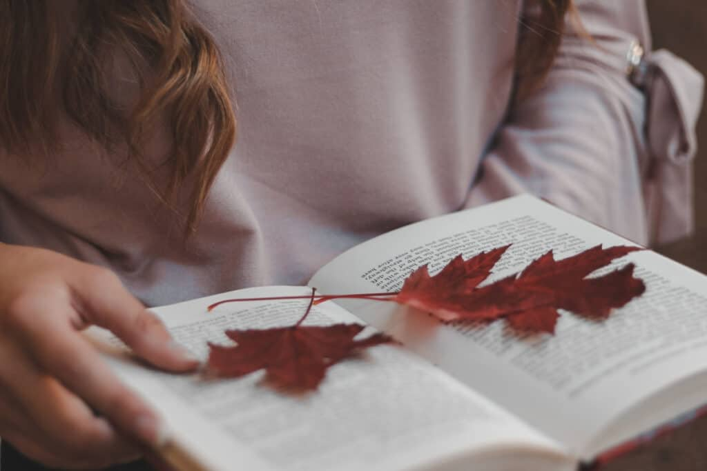 autumn fall leaves leaf craft diy