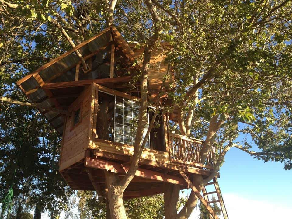 treehouse of your dreams san jose rental